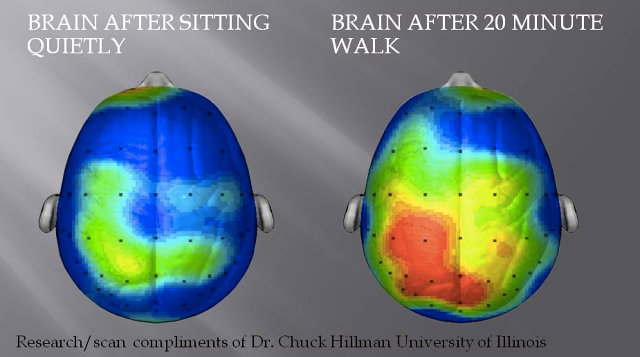 FC-3025957-inline-i-1-what-happens-to-our-brains-when-we-exercise-and-how-it-makes-us-happier